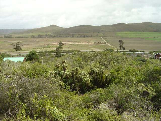 Property & Real Estate Sales - Plot in Fraaiuitsig, Reebok, Garden Route, South Africa